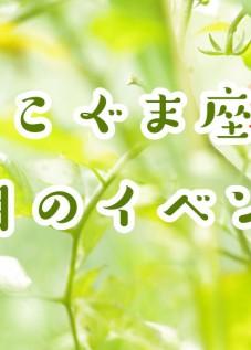 こぐま座の7月イベント