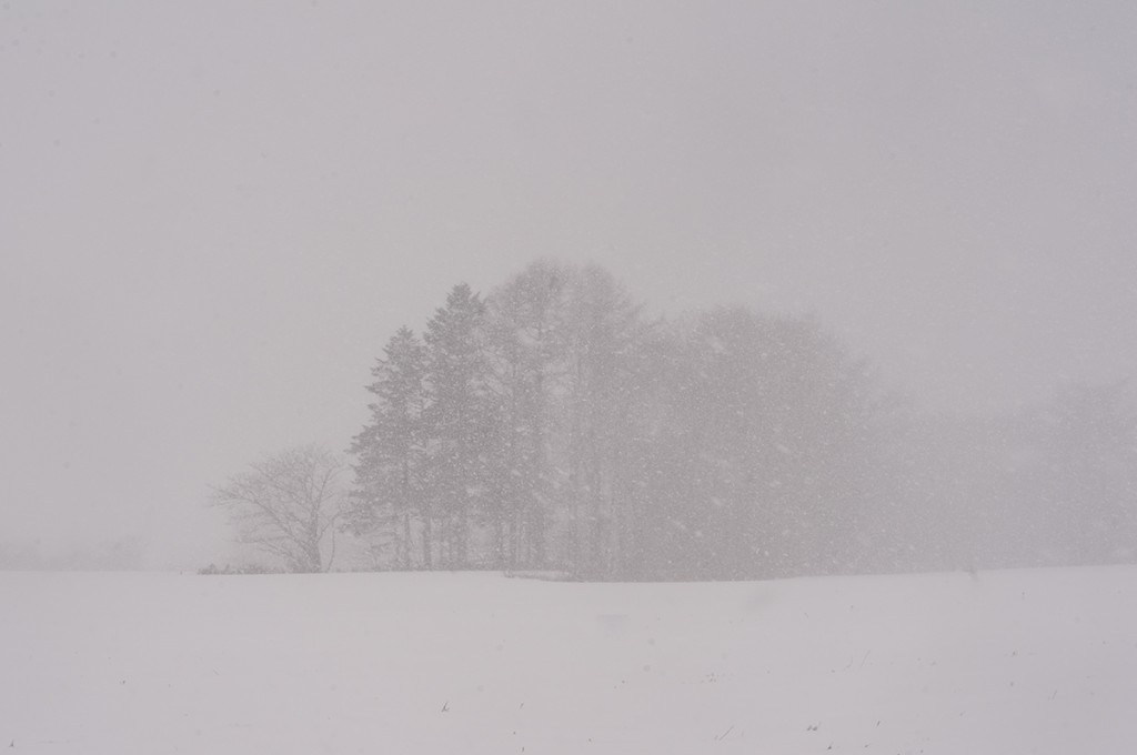 北海道 トンコリ アイヌ 楽器 長沼 カントリーバーン 二宮 作家 職人 手掘り 雪風景