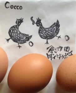 エコビレッジ 卵