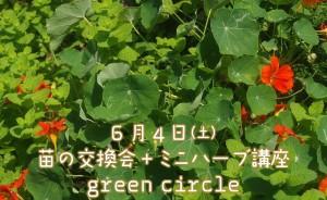 村上朋子 ハーブ講座 2016 ともちゃん