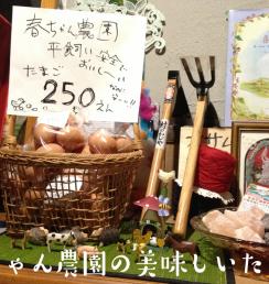 春ちゃん農園 平飼いたまご 北海道 長沼